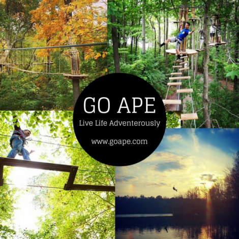 go ape, alive holiday, christmas gift guide, stl fashion blogger, alive magazine